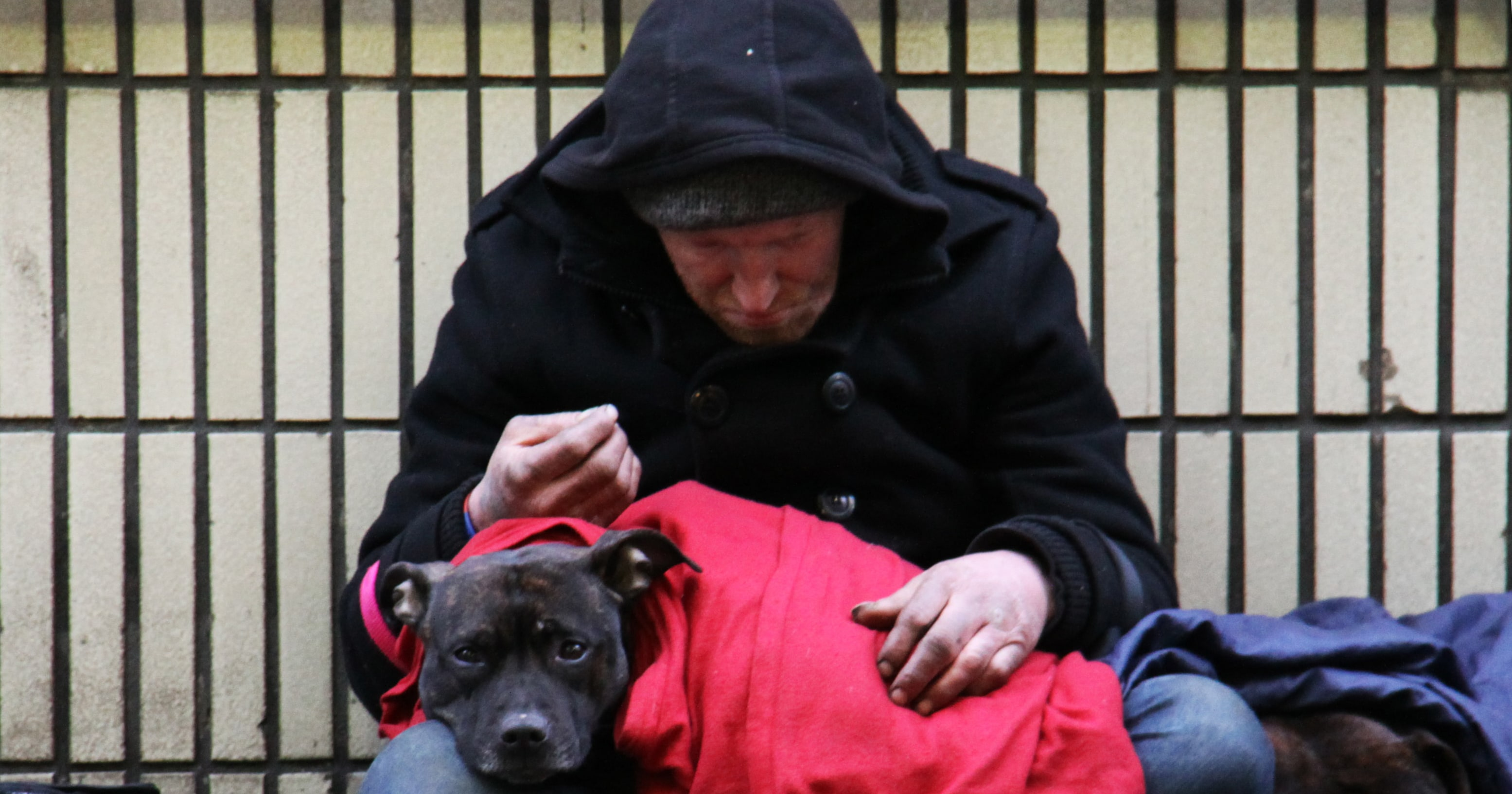 Depressed Homeless Man in black, hooded, jacked with black dog in red blanket laying.